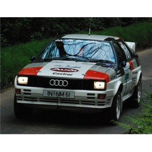 Audi Quattro Full Graphics Race Acrolpolis Rally Kit
