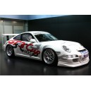 Porsche WTCC GT3 Cup Full Graphics Kit