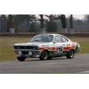 Vauxhall Firenza 1974 DTV Rally Race Graphics Kit