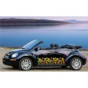 VW Beetle Daisies Flower full graphics kit