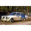 Ford Escort 1979 Portugal Rally Graphics Kit
