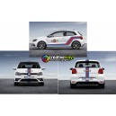 VW Polo WRC Martini Side Stripe Kit