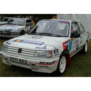http://www.creative-vinyl.com/870-thickbox/peugeot-309-wrc-1992-full-rally-graphics-kit.jpg