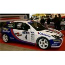 Ford Focus 2001 WRC Full Graphics Kit