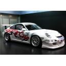 Porsche WTCC GT3 Cup Full Graphics Kit