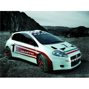 https://www.creative-vinyl.com/1182-thickbox/fiat-punto-abarth-wrc-full-graphics-race-rally-kit.jpg