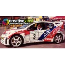 Peugeot 206 Fortuna 2001 Full Rally Graphics Kit
