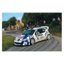 Peugeot 206 1999 WRC Full Rally Graphics Kit